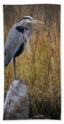 Great Blue Heron On Spool Beach Towel by Debra and Dave Vanderlaan