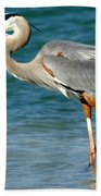 Great Blue Heron With Catch Beach Towel