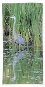 Great Blue Heron With Reflection Beach Towel