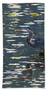 Great Blue Heron With Snack Beach Towel