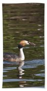 Great Crested Grebe With Breakfast Beach Towel
