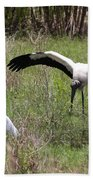 Great Egret And Wood Stork In The Marsh Beach Towel