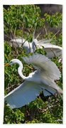 Great Egret In Flight Beach Towel