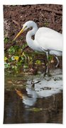 Great Egret Searching For Food In The Marsh Beach Towel