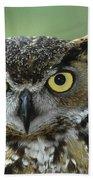 Great Horned Owl Bubo Virginianus Beach Towel