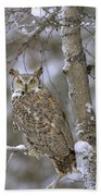 Great Horned Owl In Its Pale Form Beach Towel by Tim Fitzharris