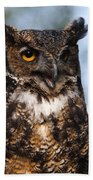 Great Horned Owl Portrait Beach Towel