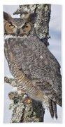 Great Horned Owl Portrait Beach Towel
