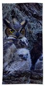 Great Horned Owl Twins Beach Towel