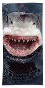Great White Shark Smile Australia Beach Towel by Mike Parry