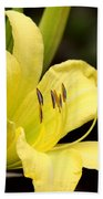 Green And Yellow - Lily Beach Towel