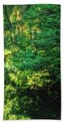 Green Dream Beach Towel