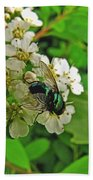 Green Fly Beach Towel