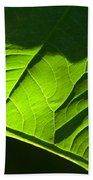 Green Leaf Beach Towel