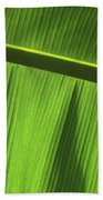 Green Leaf, Close-up Beach Towel