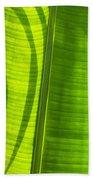 Green Leaf Beach Towel by Setsiri Silapasuwanchai