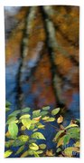 Green Leaves And Autumn Reflection Beach Towel