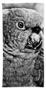 Green Parrot - Bw Beach Towel