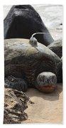 Green Sea Turtle With Gps Beach Towel