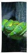 Green Snake Beach Towel