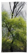 Green Tree And Pampas Grass Beach Towel