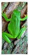 Green Tree Frog Beach Towel