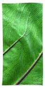 Green Veiny Leaf 2 Beach Towel