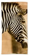 Grevys Zebra Beach Towel