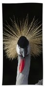 Grey Crowned Crane Balearica Regulorum Beach Towel