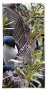 Grey Feathers - Tree Swallow Beach Towel