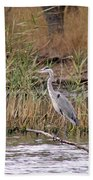 Grey Heron Beach Towel