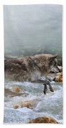 Grey Wolf Jumping Over A Mountain Stream Beach Towel
