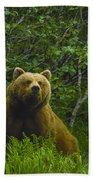 Grizzly Bear Alaska Beach Towel