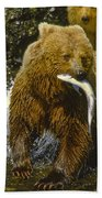 Grizzly Bear And Cubs Beach Towel