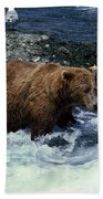 Grizzly Bear Fishing Beach Towel