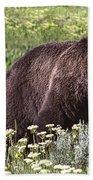 Grizzly Bear In Yellowstone Neg.28 Beach Towel
