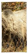 Grizzly Camouflage Beach Towel