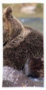 Grizzly Cavorts In Stream Beach Towel