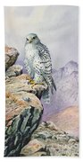 Gyrfalcon Beach Towel