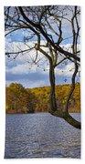 Hall Lake In Autumn No 0118 Beach Towel