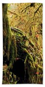 Hall Of Mosses Beach Towel