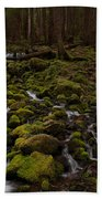 Hall Of The Mosses Beach Towel