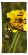 Halloween Pennant Beach Towel