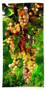 Hanging Grapes On The Vine Beach Towel by Elaine Plesser