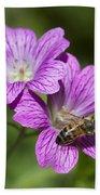 Hardy Geranium And Honey Bee Beach Towel
