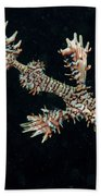Harlequin Ghost Pipefish With Fins Beach Towel