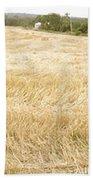 Harvest Time Beach Towel