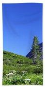 Hatcher Pass Alaska Beach Towel