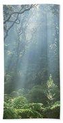Hawaiian Rainforest Beach Towel by Gregory Dimijian MD