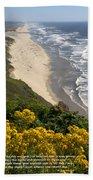Heceta Beach View Beach Towel
